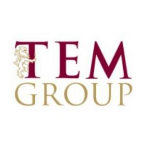TEM Group Logo
